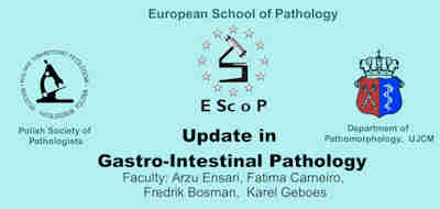 EScoP Kraków, 16-18 June 2011 - Update in Gastro-Intestina Pathology