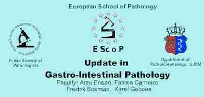 EScoP Kraków, 16-18 June 2011 - Update in Gastro-Intestina Pathology